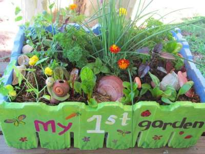 One of our edible salad gardens in a box.  The colours, herby aromas and variety of textures give this micro garden plenty of eye appeal!