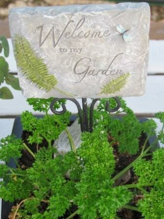 Welcome to my garden - I hope you enjoy wandering around my blog and picking up some tips, sharing your own ideas and experiences here and finding some inspirational photos to get you started with your own projects.