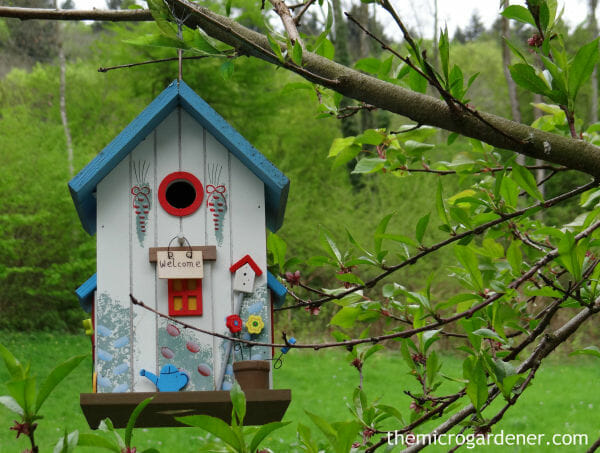 Bird house habitat hanging in a tree doubles as garden art in this small garden design. | The Micro Gardener