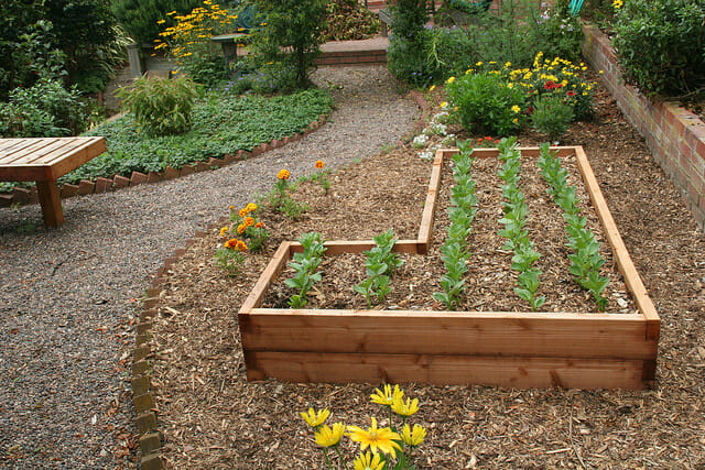 Raised garden bed here one made out of timber the micro gardener