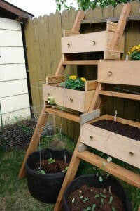 Recycled drawers as growing boxes with tomato trellises underneathRecycled drawers as growing boxes with tomato trellises underneath | The Micro Gardener