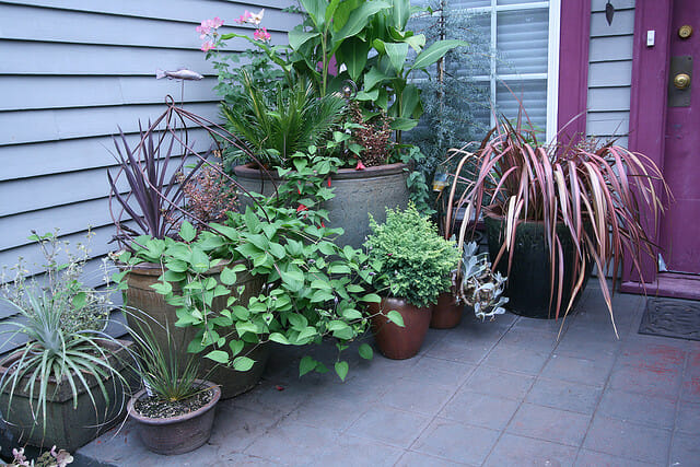 inspirational small garden ideas ForInspirational Small Garden Ideas