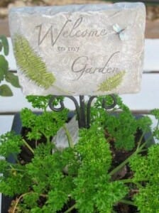 Welcome to my garden.  Here I have a mini sign in one of my herb pots that is on an outdoor table as an edible centrepiece. | The Micro Gardener