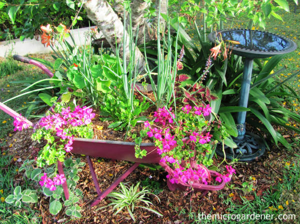 Small garden design idea: Fill an old wheelbarrow with fresh herbs or flowers and use it as a portable garden feature.