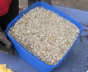 Add vermiculite to potting mix to improve drainage