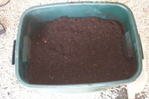 Compost helps enrich the soil