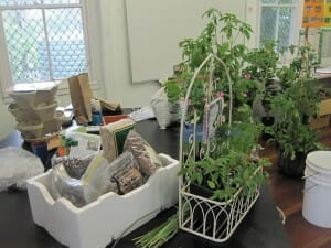 Workshop display includes design ideas, simple edible gardens, materials and plenty of resources for participants to touch, taste and smell.