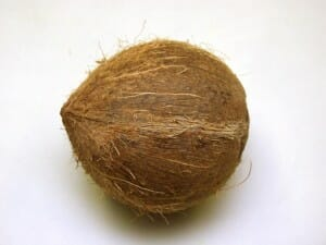 Coconut husk fibre is a good source of organic matter