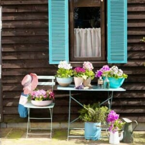Small Gardens Workshop - sharing loads of ideas