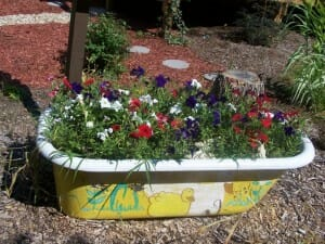 From bath tub to garden tub this creative gardener has created a colourful feature planter.  | The Micro Gardener www.themicrogardener.com