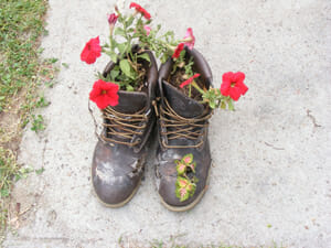 A pair of boot planters looks cute with colourful flowers peeping out of the top. | The Micro Gardener www.themicrogardener.com