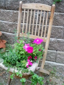 When timber chairs are past their prime or the seat falls apart, it's the perfect time to reuse as a feature garden planter.  | The Micro Gardener www.themicrogardener.com