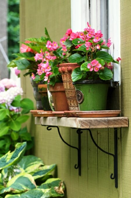 Pots on a repurposed shelf make most of vertical space, are easily accessible and add charm to the house exterior.| The Micro Gardener