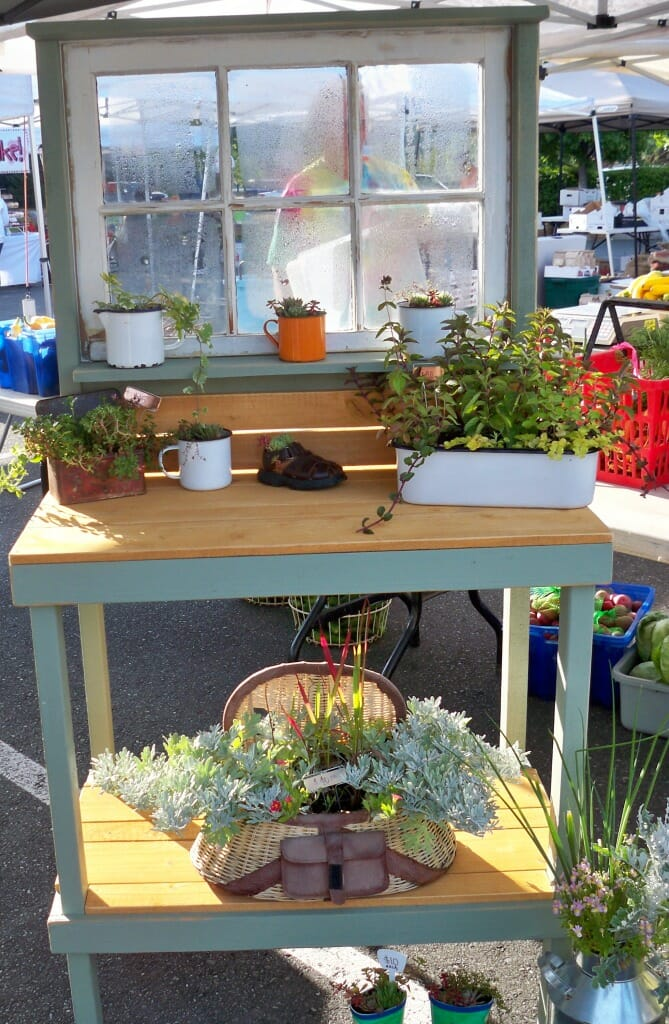 Choose Safe Containers For Growing Food