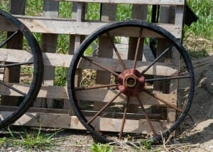 Wheels are often thrown out when no longer required, but with a little imagination, they can be repurposed into useful planters.