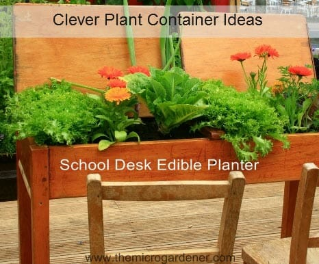 School desk edible planter - just one of many Clever Plant Container Ideas @ www.themicrogardener.com