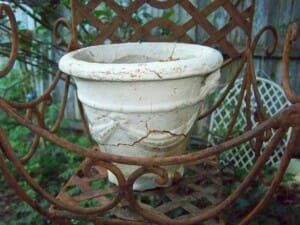 Trash and treasure can make wonderful feature pots.
