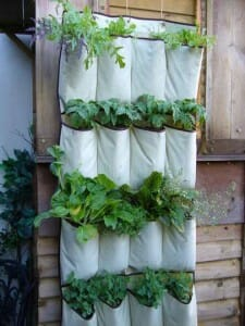 Canvas drains well as the cloth is porous so the top plants will automatically water those underneath.  | The Micro Gardener www.themicrogardener.com
