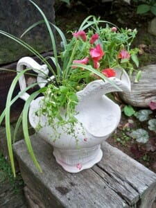 This white crackle jug finds a new life in the garden as a repurposed planter.