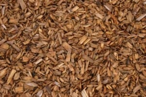 Bark chip mulch is coarse, holds moisture well and allows water to drain easily to the soil below.Bark chip mulch is coarse, holds moisture well and allows water to drain easily to the soil below. Photo by Scott Liddell.