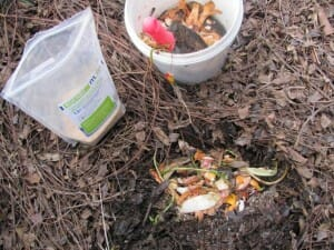 Make a pocket in your compost for food scraps sprinkled with bokashi.