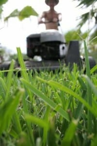 Mowing turf with a sharp blade and on a high cutting increases water loss but builds a healthier root system.