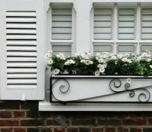 White window box vertical planter. Photo: Holly Gramazio