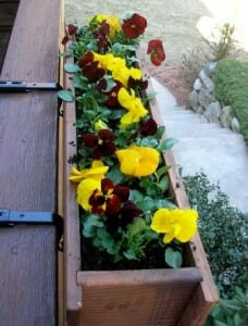 Increase the planting area with this creative vertical garden solution.  | The Micro Gardener