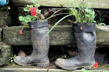 Gumboot planters suit flowers and plants that have a deeper root system and need that extra depth to grow. | The Micro Gardener