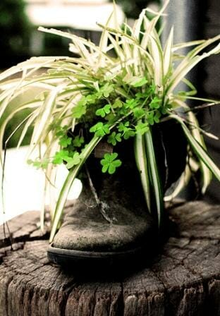 rRustic old boot garden - great use of textures and a cute feature planter. Photo: Charlene