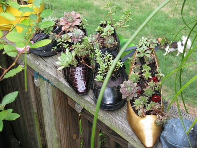 One of a kind high heel planters.