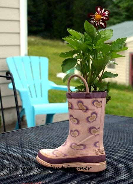 A recycled gumboot planter from The Inadvertent Farmer