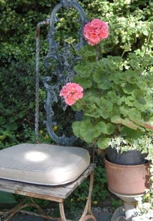 I just love this simple seat in the shade. It's such an inviting space on a hot day! Snuggle up to the colourful geranium in a cachepot - it can be taken out easily and rotated to a sunny spot. Photo: Lisa Allen, My Artful Life