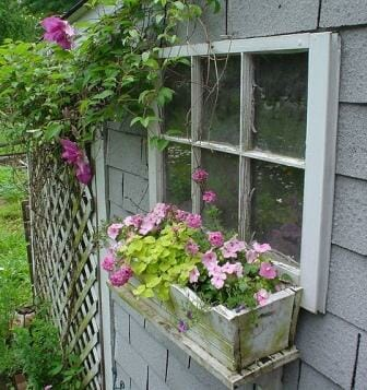 Lattice can be added to many surfaces with a couple of hooks or screws. If you want to hide an unattractive wall or screen a utility space, try this technique.  | The Micro Gardener