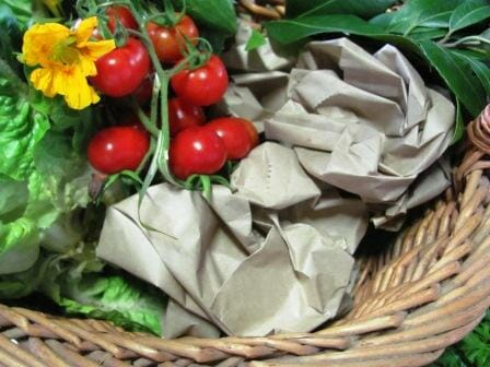 Cover the paper well with the contents | Photo: The Micro Gardener