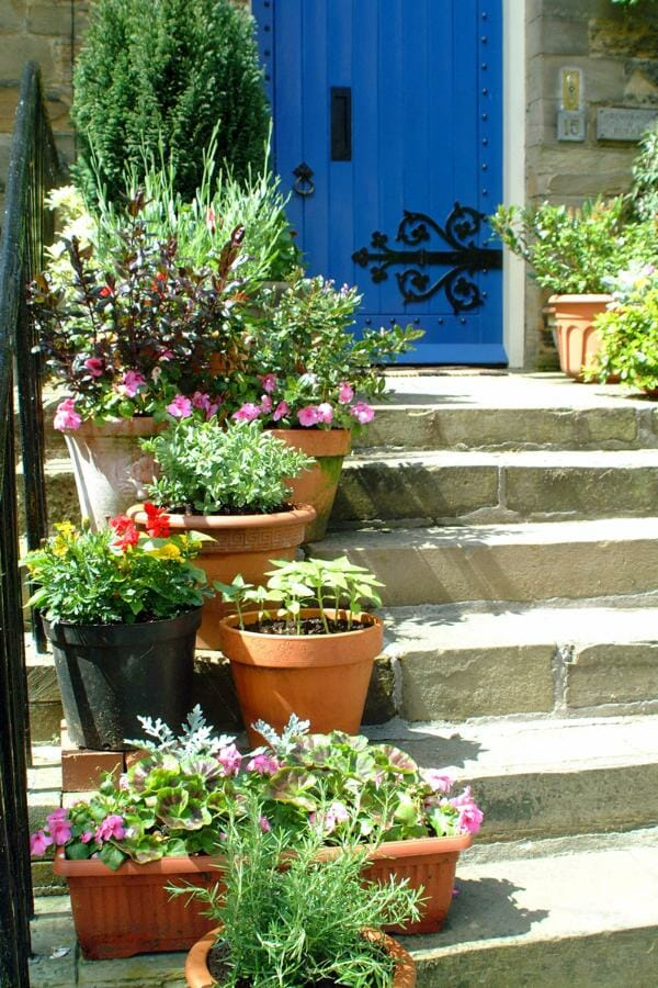 Wide steps provide a perfect tiered position for pots  | The Micro Gardener