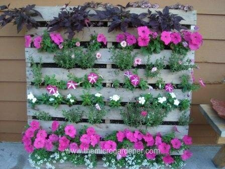 Vertical flower pallet garden | The Micro Gardener