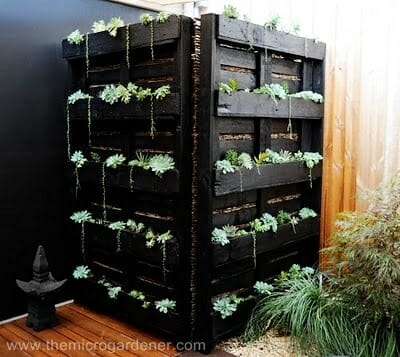 Dual solution: Garden art and functional water tank screen | The Micro Gardener