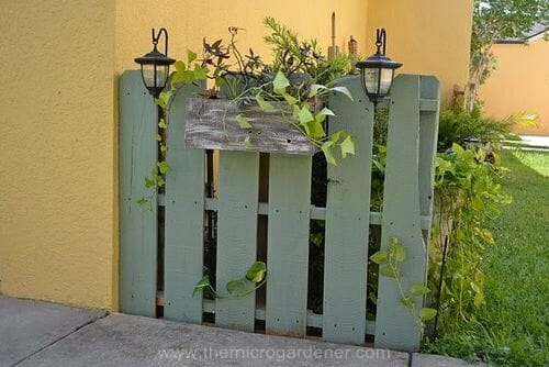 Painted Feature Fence made from a pallet via Camelot Art Creations | The Micro Gardener www.themicrogardener.com