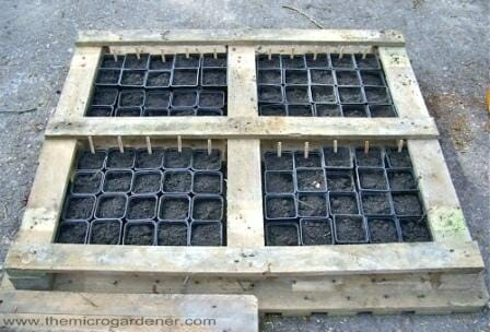 Pallet seed raising greenhouse. | The Micro Gardener