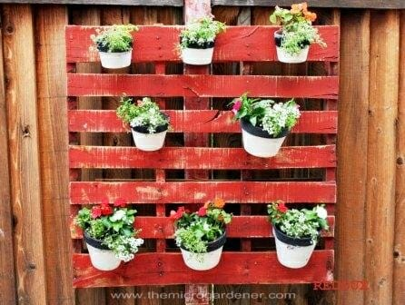 Pots hanging on a wooden pallet | The Micro Gardener
