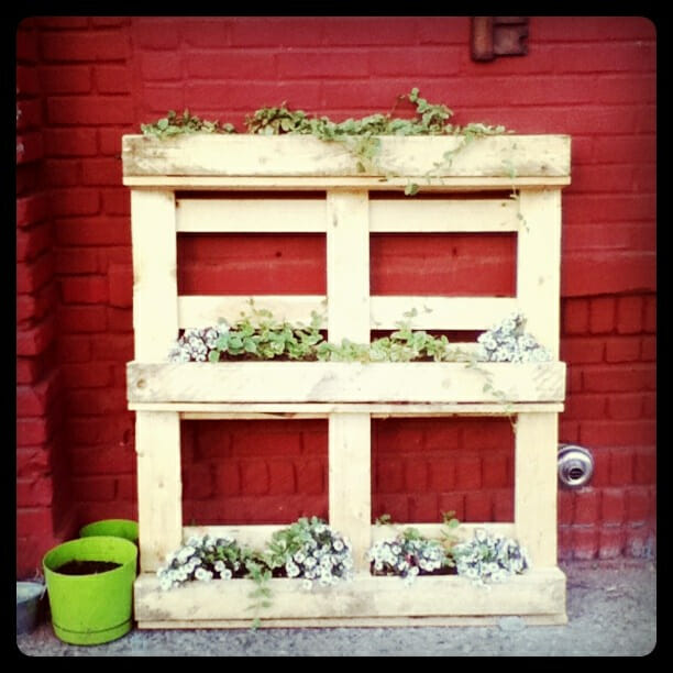 Repurposed pallet planter the micro gardener www themicrogardener