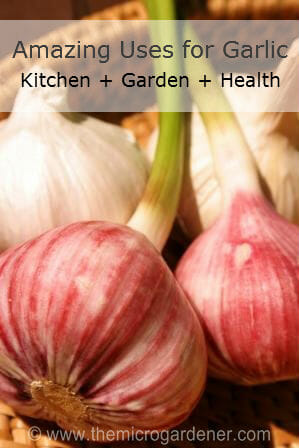 In the kitchen, garden &amp; for health