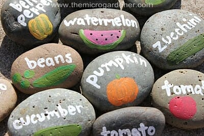 Hand painted rock labels | The Micro Gardener