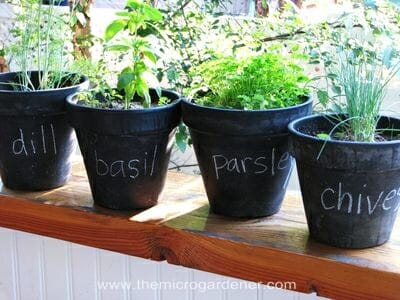 Herb chalkboard paint pot labels | The Micro Gardener