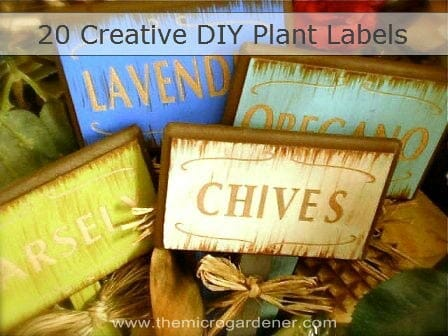 20 creative DIY ideas for making your own plant labels & markers | The Micro Gardener