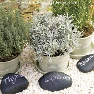 Paint pebble plant markers | The Micro Gardener