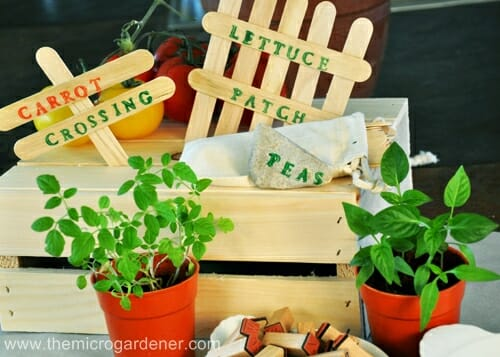 Popsicle stick & painted letters plant labels | The Micro Gardener