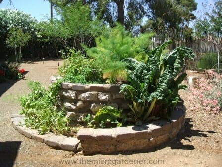 Feature spiral garden with both herbs and vegetables. | The Micro Gardener