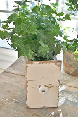 Old drawer planter cache pot | The Micro Gardener